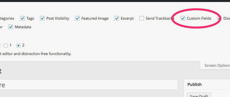 Custom Fields Setting for Posts and Pages