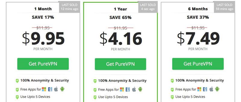 PureVPN Cost