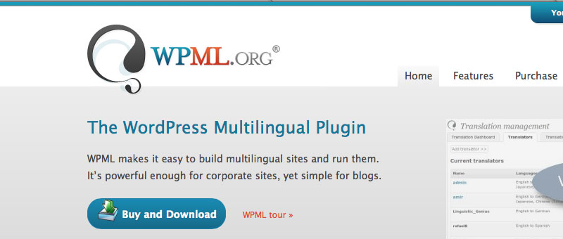 The WordPress Multilingual Plugin